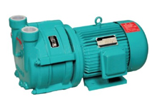 Single-Stage Water-Ring Vacuum Pumps
